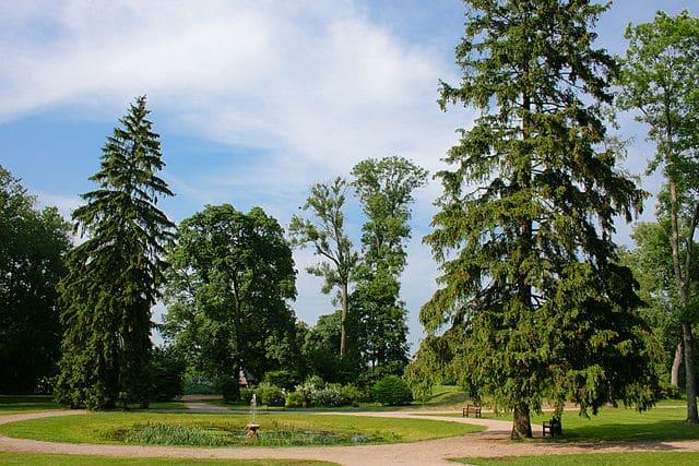Botanische tuin Vilnius
