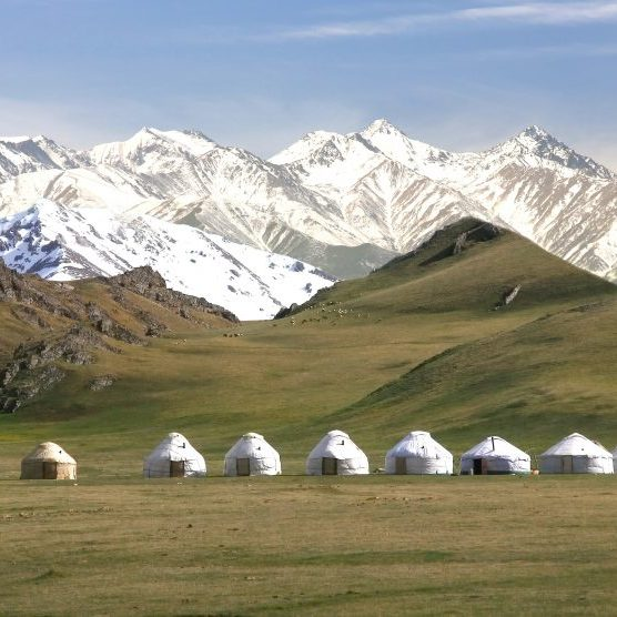 Bigstock The Ger Camp In A Large Meadow 362748805 990x556